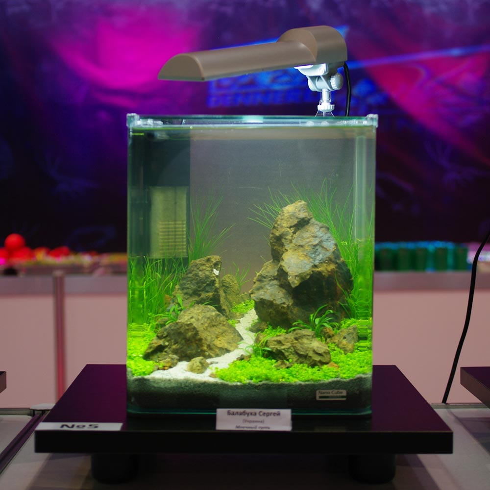 """hookup cube 4 nano Creating the ultimate """"nano"""" experience  6g nano-cube original: 148 gph 12g nano-cube original: 148 gph  find a leveled surface and place nano-cube on top of."""